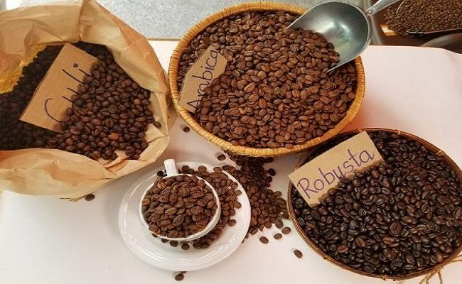 Đặc điểm cà phê nhân