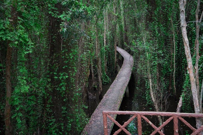 Điểm du lịch đẹp ở gần TPHCM - Làng nổi Tân Lập