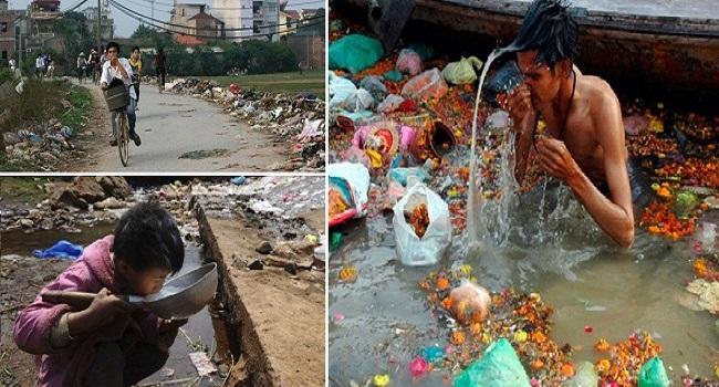 Hậu quả của việc xả rác thải nhựa