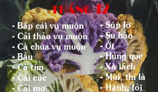 Lịch trồng rau theo tháng 12