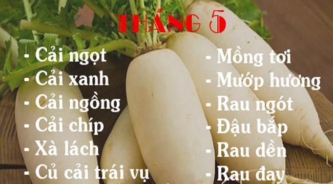 Lịch trồng rau theo tháng dương lịch