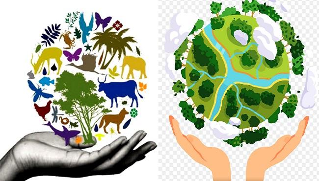 Ý nghĩa việc bảo vệ môi trường