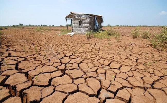 Nguyên nhân ô nhiễm đất ở Việt Nam