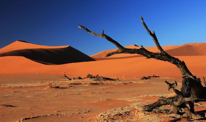 Nơi nóng nhất thế giới Sa mạc Dash - eLoot
