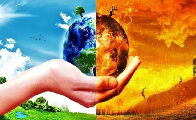 ô nhiễm môi trường ảnh hưởng đến sinh vật