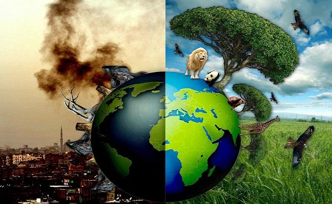 Hậu quả của ô nhiễm môi trường ở việt nam